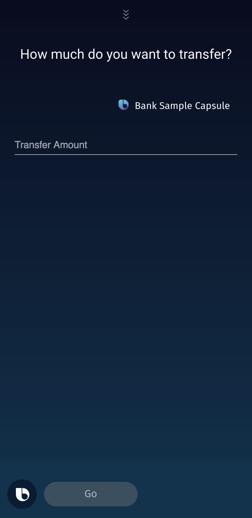 Form for transfer amount input